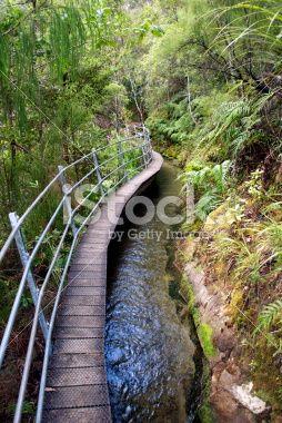 Pupu Hydro Walkway, Golden Bay, New Zealand Royalty Free Stock Photo