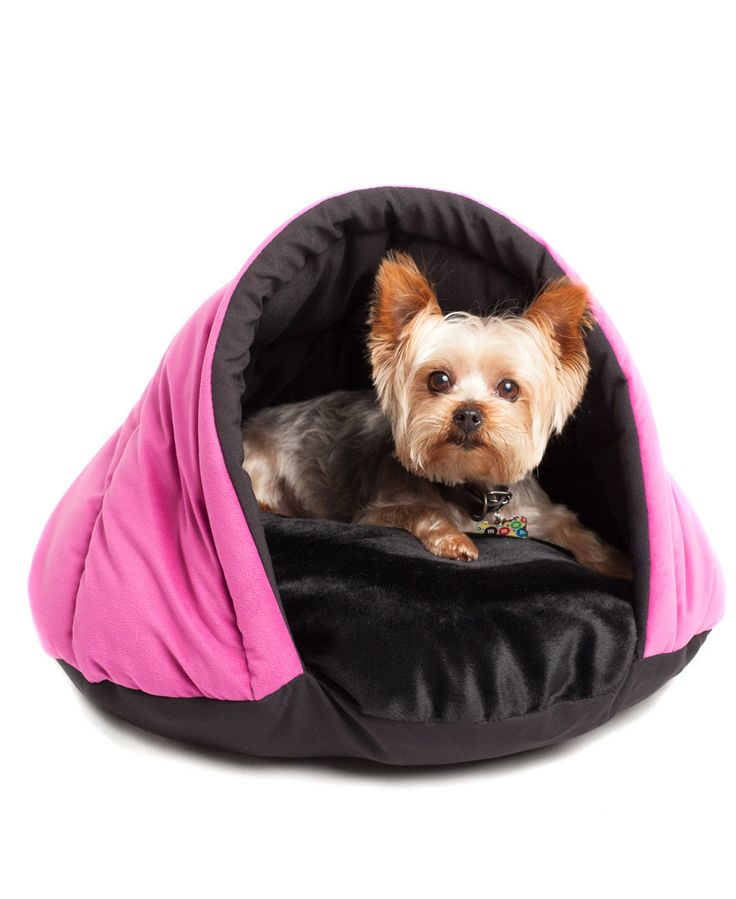 pink eskimo tent pet so cute for a small dog my pup already loves to hide so this would be. Black Bedroom Furniture Sets. Home Design Ideas
