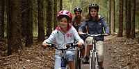 Why not do a bit of cycling within Haldon Forest on your holidays! Fun for all the family, whether you want an easy going trail or if you want to show off your skills in the skills area and pump loop!e