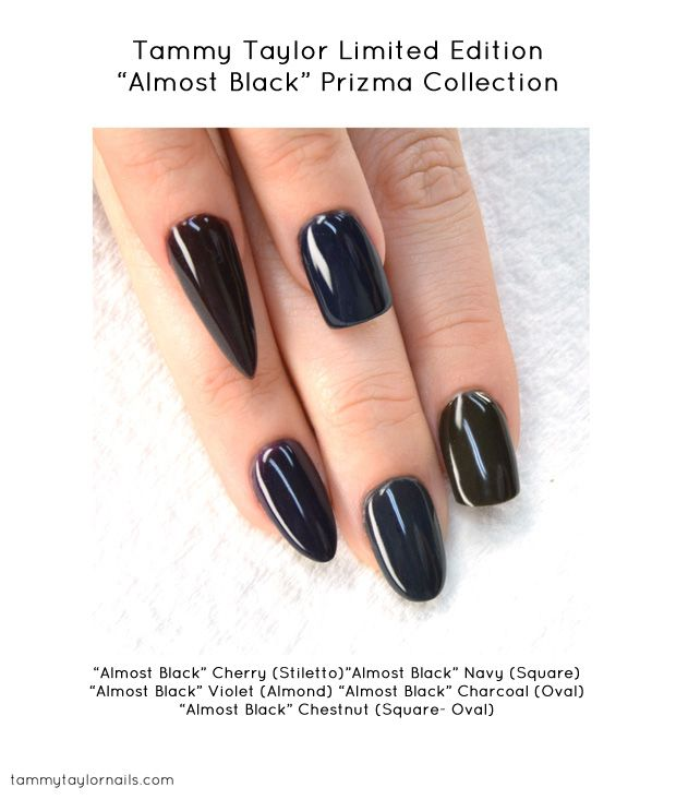 "Guide to the different nail shapes: Tammy Taylor - Limited Edition ""Almost Black"" Prizma Collection"