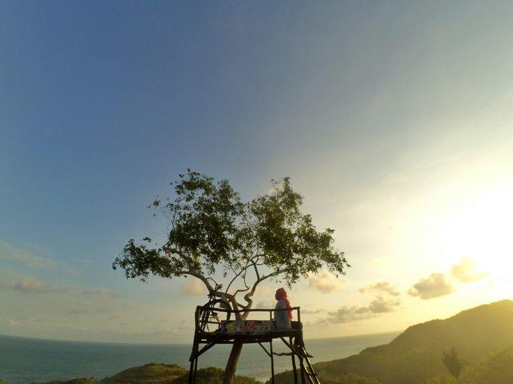 bukit maracah, pantai butuh, gunungkidul by @vidyaayuu #explorejogja #bukitmaracah #gunungkidul #travelingindonesia