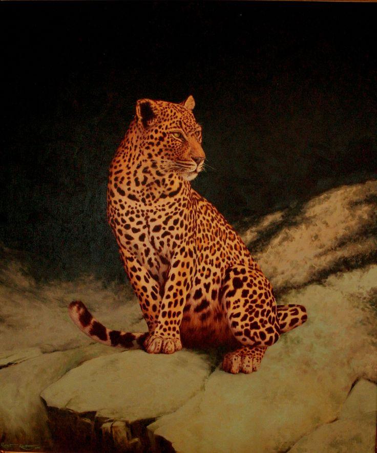Leopard study Oil on canvas  by Robert Koch