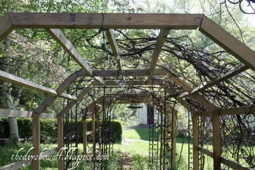 1000+ images about Grape Arbors on Pinterest