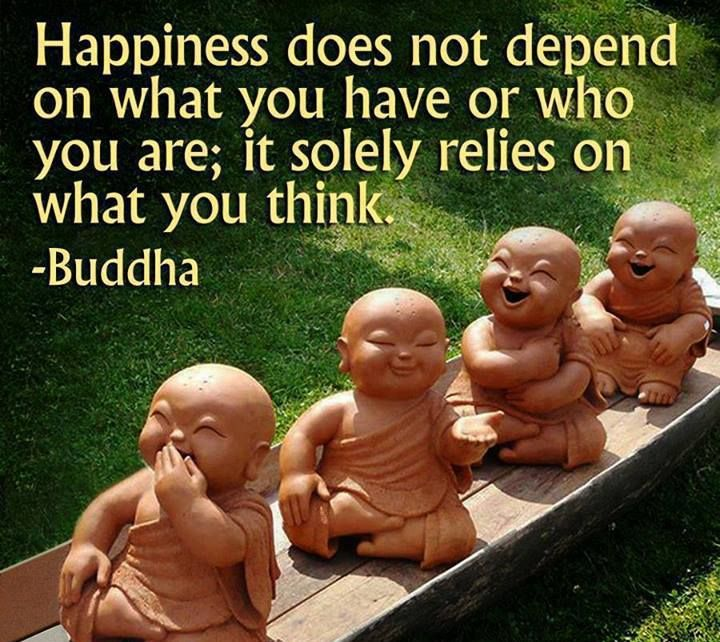 """Happiness does not depend on what you have or who you are; it solely relies on what you think."" ~Buddha ..*"