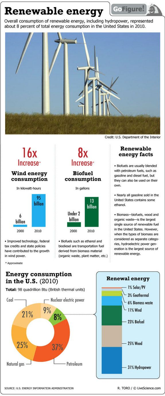 Renewable Energy Consumption in the United States