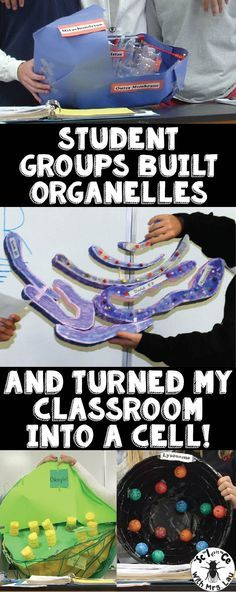 My students turned my whole classroom into a giant cell! Each group of students built an organelle (with a rough scale model in relation to the size of the classroom) and presented them to the class. I love this because it helps students really connect