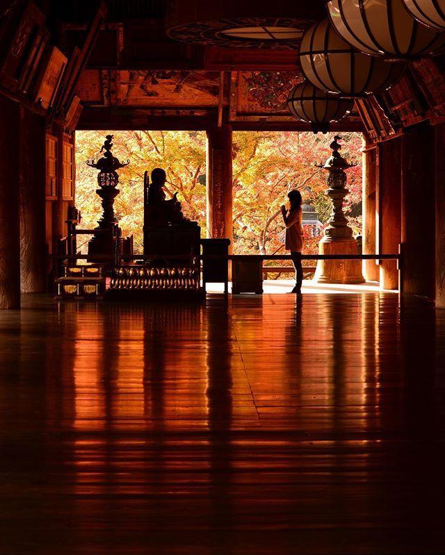 . . Location:Nara Japan . 長谷寺といえばこのショット✨笑 . #長谷寺#リフレクション#シルエット#紅葉#奈良#奈良の絶景