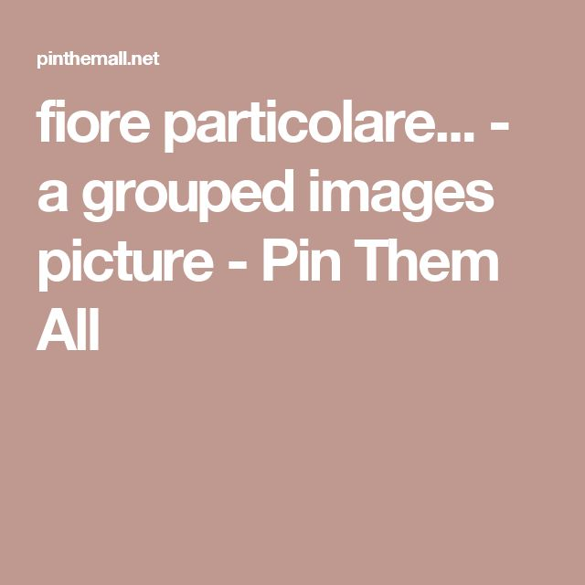 fiore  particolare... - a grouped images picture - Pin Them All