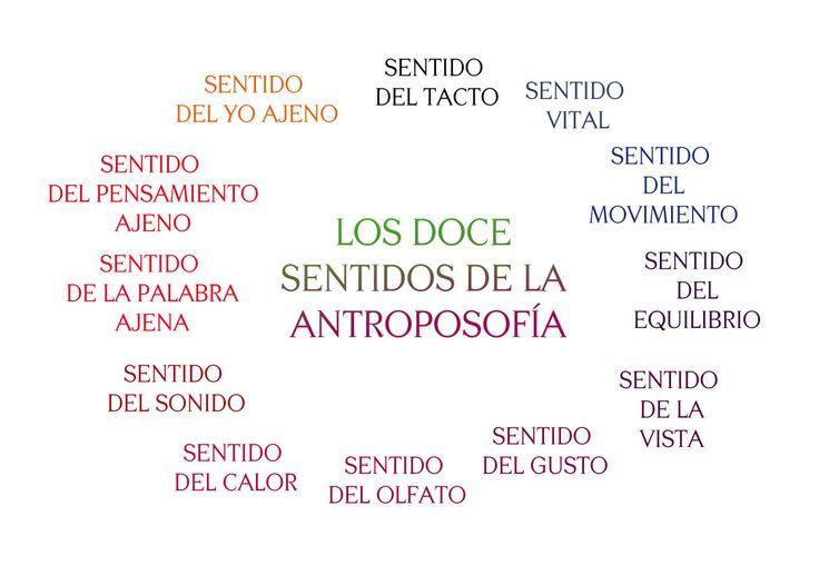 Los Doce Sentidos desde el punto de vista de la Antroposofía.