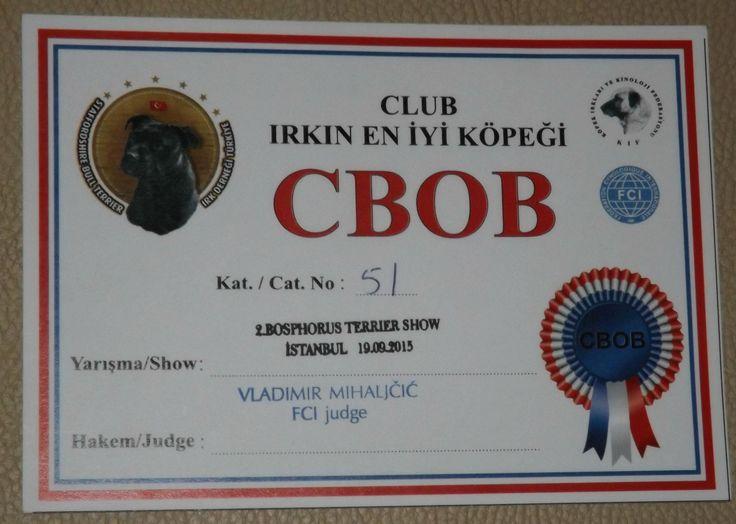 Carmielo Ephesus Black  Staffordshire Bull Terrier  Intermedıate Class 1 - CWC Club Wınner Best Of Breed - BOB En Iyı Yerli Üretim 2. Best In Show - BIS 5.  THANK YOU SPONSOR:  Farmina Pet Foods ND Sami Arkohen  Thank you handler: Öç Çiftci  Judge / Hakem :  Vladimir Mihaljcıc SERBIA