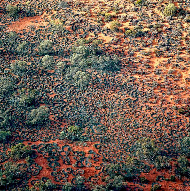 Paysages des terres Aborigènes dans la communauté du Spinifex Art Project. #australia #landscape #aborigene #aboriginal #inspiration