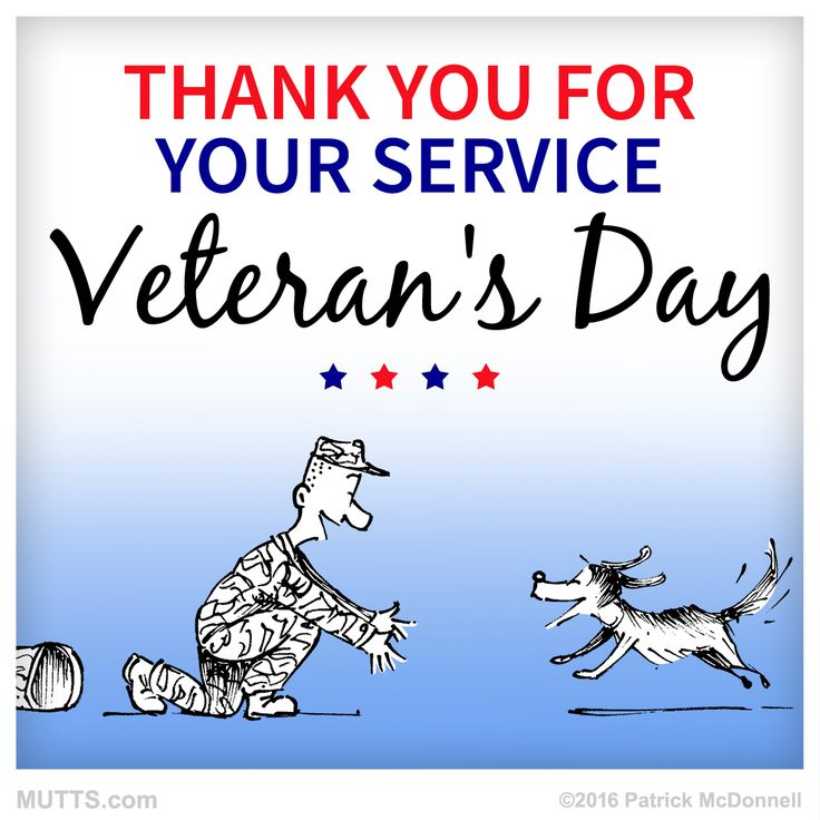 Today we thank and celebrate the men, women, and animals in the Armed Forces. #VeteransDay #MUTTSofinstagram #dogsofig #armedforces
