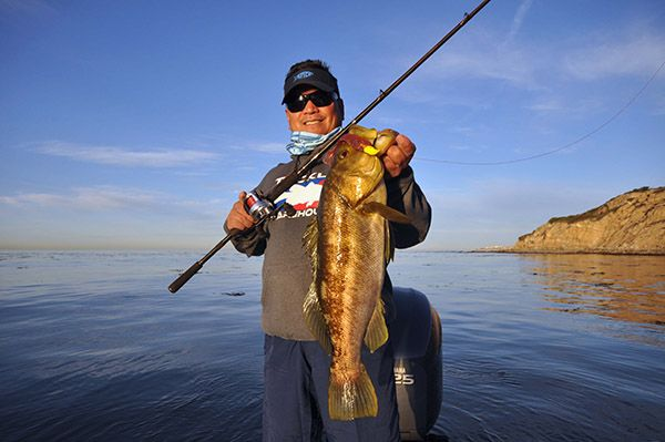 Calico bass mother ocean pinterest for Calico bass fishing