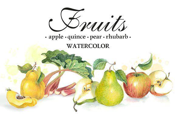 "Set of 4 watercolor ""Fruits"" by Marina.Markizova on @creativemarket"