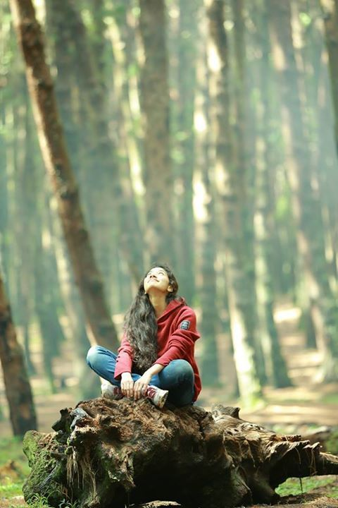 Sai Pallavi Actress Photo