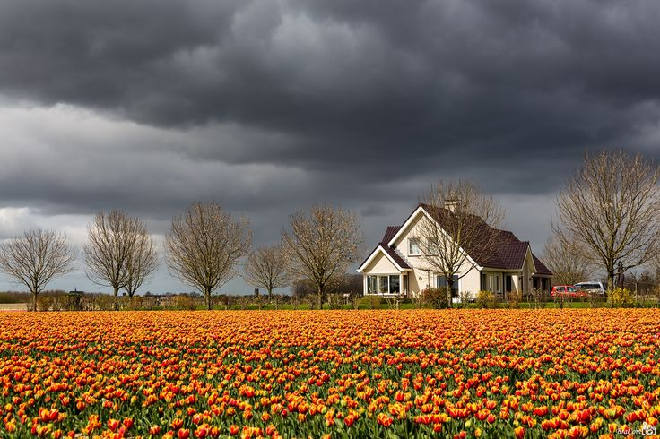 Sun and Showers by Bram van Broekhoven on 500px
