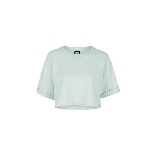 Short Sleeve Crop Sweatshirt by Ivy Park ($29) ❤ liked on Polyvore featuring tops, hoodies, sweatshirts, mint, sports crop top, short sleeve tops, mint sweatshirt, sport sweatshirts and cropped sweatshirt