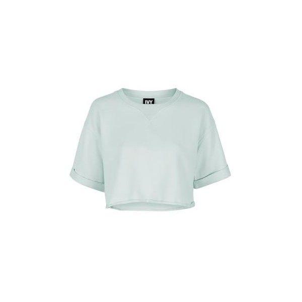 Short Sleeve Crop Sweatshirt by Ivy Park ($29) ❤ liked on Polyvore featuring tops, hoodies, sweatshirts, mint, sports crop top, short sleeve tops, mint sweatshirt, sport sweatshirts and cropped sweatshirt