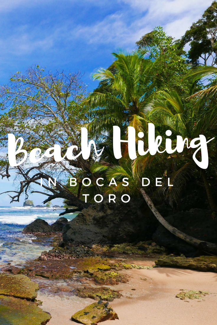Hiking from Wizard Beach to Red Frog Beach on Isla Bastimentos, Bocas del Toro • Addie Abroad