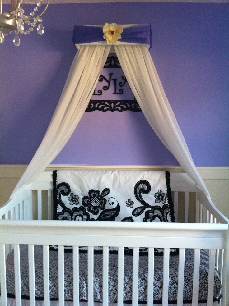 Canopy over crib baby girl pinterest canopy over for Canopy above crib