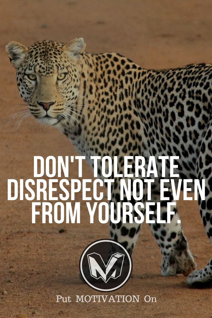 Don't tolerate disrespect. Follow all our motivational and inspirational quotes.Follow the link to Get our Motivational and Inspirational Apparel and Home Décor. #quote #quotes #qotd #quoteoftheday #motivation #inspiredaily #inspiration #entrepreneurship #goals #dreams #hustle #grind #successquotes #businessquotes #lifestyle #success #fitness #businessman #businessWoman #Inspirational