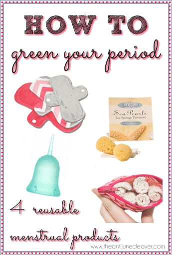 Haven't quite decided what I think about these - 4 Reusable Menstrual Product Options to Green Your Period