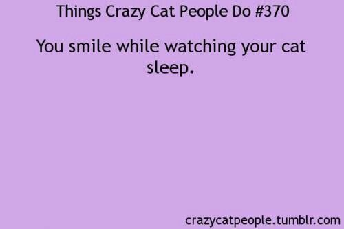 Things Crazy Cat People Do #370