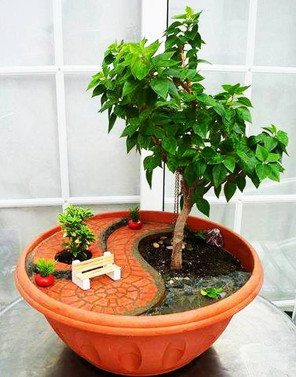 mini jardim de quintal ? Doitri.com