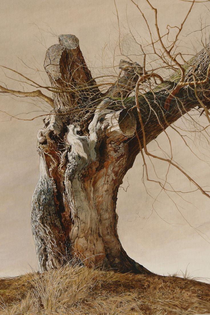 Laura Zuccheri, watercolour detail lonely tree, www.salamongallery.com