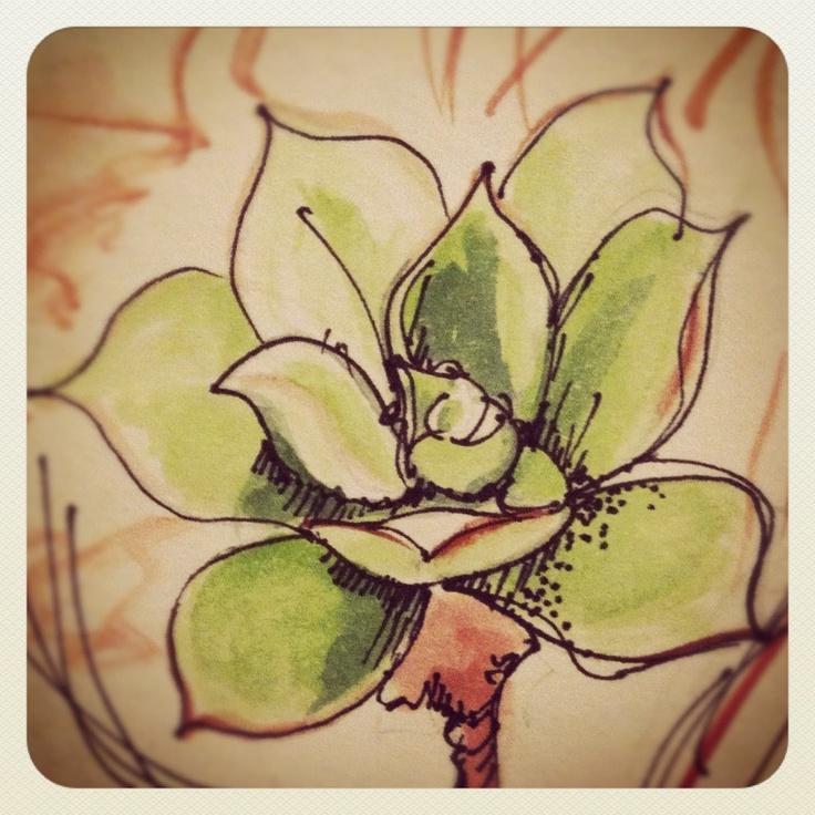 #sketching #watercolours #art #succulents