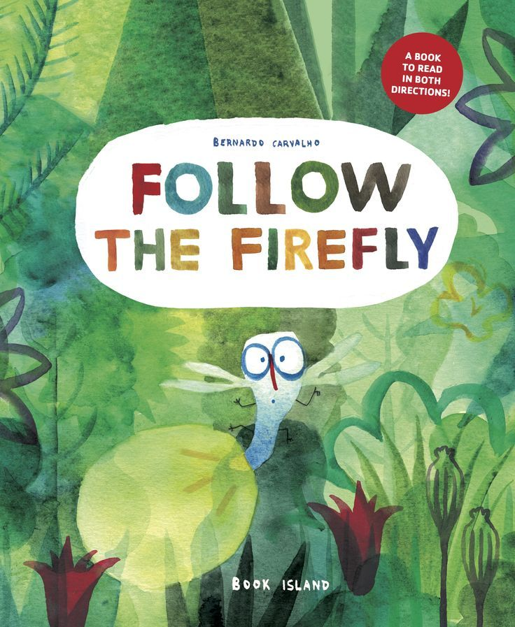 """""""Follow the Firefly/Run, Rabbit, Run"""", by Bernardo Carvalho - a riotous trip that can be read in both directions."""