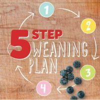 Cow and Gate 5 Step Weaning Plan Review