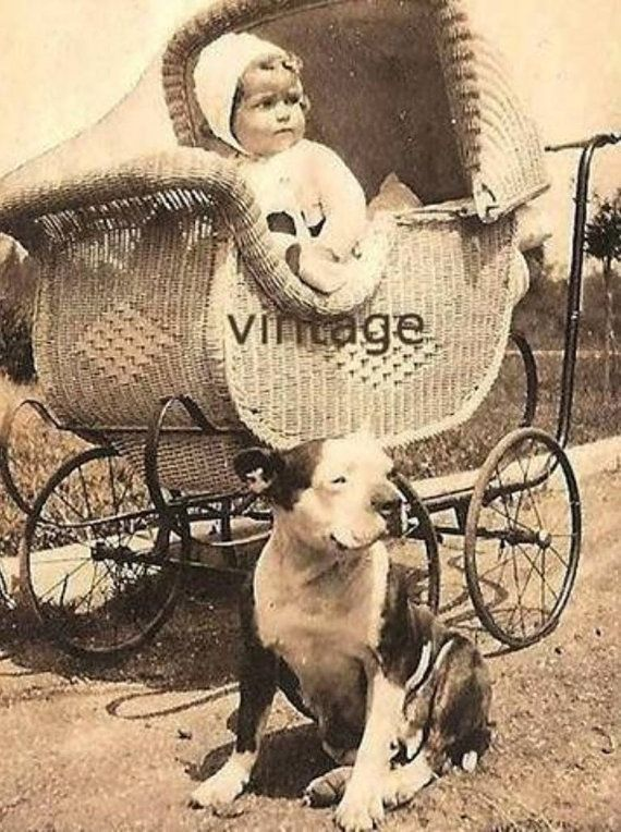 vintage pitbulls | Vintage Pitbull with Baby Print Decoupaged on by PawmazingGifts, $20 ...