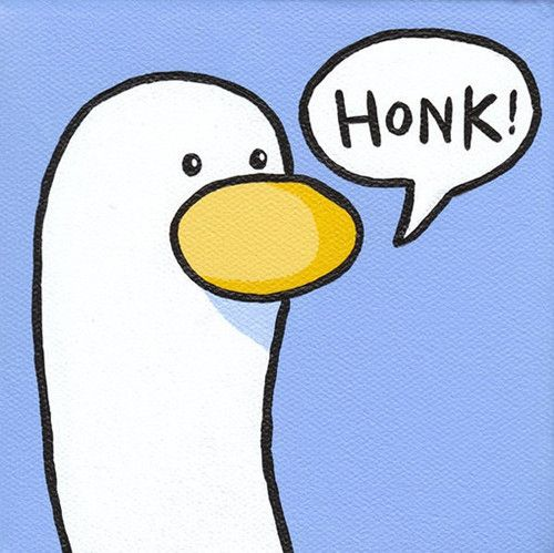 Image result for honk
