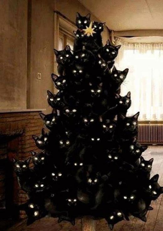 funny-Christmas-tree-black-cats
