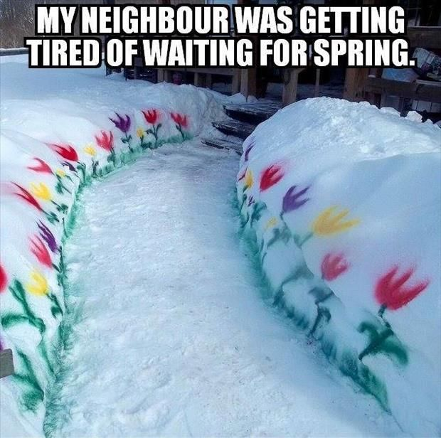 I'd be that neighbor if I could bear to be out in the cold long enough to paint flowers...