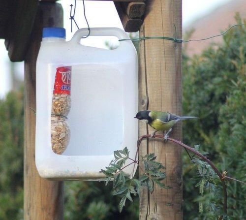 How to recycle plastic bottles for bird feeders creative for Plastic bird feeders