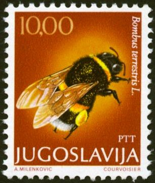 Jugoslavija Stamp Bee http://animalonstamps.wordpress.com/category/yugoslavia/#