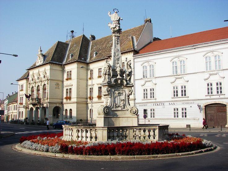 Mosonmagyaróvár itt: Győr-Moson-Sopron