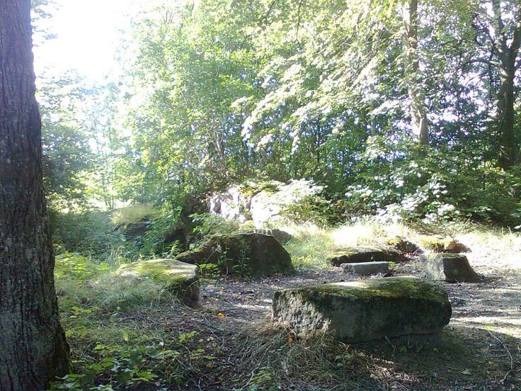 Szczątki po bunkrze w zagajniku pomiędzy starym cmentarzem w lesie w Staświnach a chlewnią. Na pierwszym planie stworzone miejsce na ognisko z części betonu.