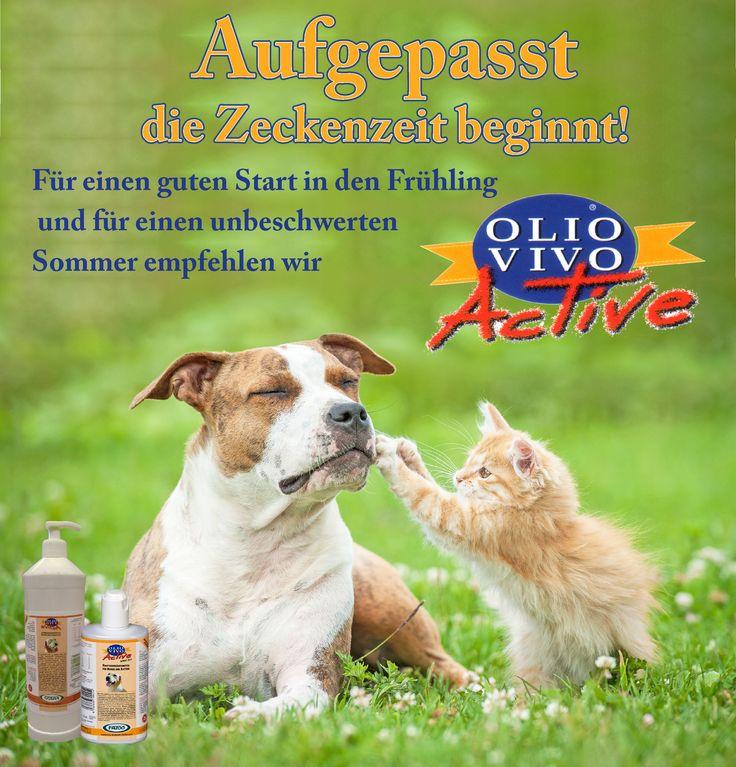 Aufgepasst die Zeckenzeit beginnt! Olio Vivo Active jetzt gegen Zecken, Sandfliegen und Co erfolgreich vorbeugen. Hier geht es direkt zum Produkt in unserem Online-Shop:  http://www.technoplan.de/futter-shop/hunde-shop/Futterzusaetze-128/FAZOO---Olio-Vivo-130/Olio-Vivo-Active---fuer-Hunde.html