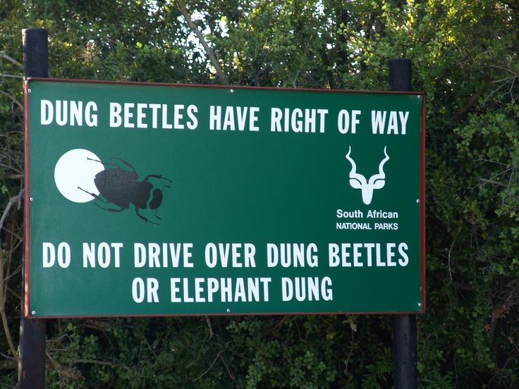 You see some interesting road signs in South Africa.