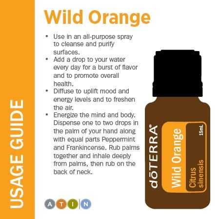 doTERRA Wild Orange ~ To explore and purchase essential oils visit: https://www.mydoterra.com/sarajanelle/#/ or on Facebook https://www.facebook.com/doterrasarajanelle/