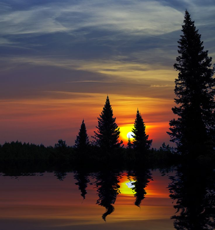 north woods sunset by Ivan Solonink