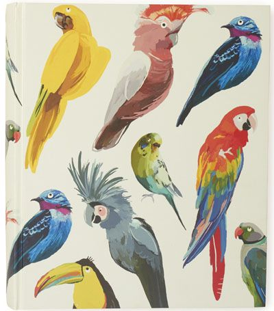 Colourful parrot penguin print, great to be used as a feature wall