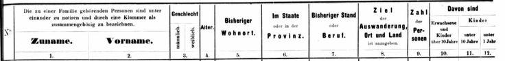 Hamburg Passenger Lists Translation: Tuesday's Tip - Sassy Jane Genealogy