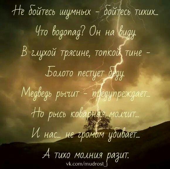 Бойтесь тихих...
