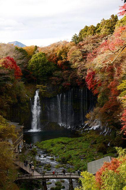 bluepueblo:    Autumn, Shiraito Falls, Fujinomiya, Japan  photo via discolor