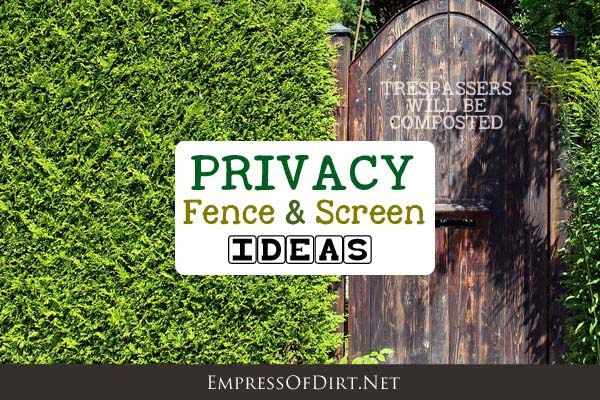 19 best privacy lanscaping images on pinterest garden for Living screen fence