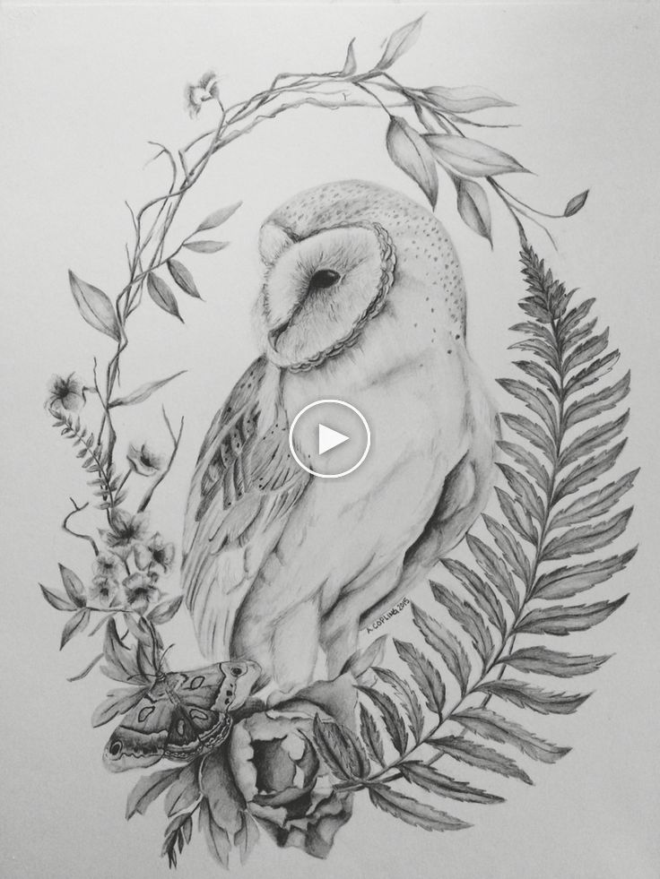 Owl Between Flowers And Ferns Owl Tattoos Owl Tattoo Drawings Owl Tattoo Barn Owl Tattoo